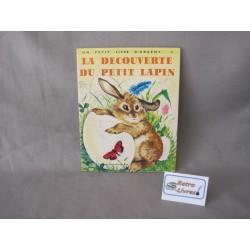 La découverte du petit lapin
